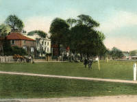 Cricket Green, Mitcham