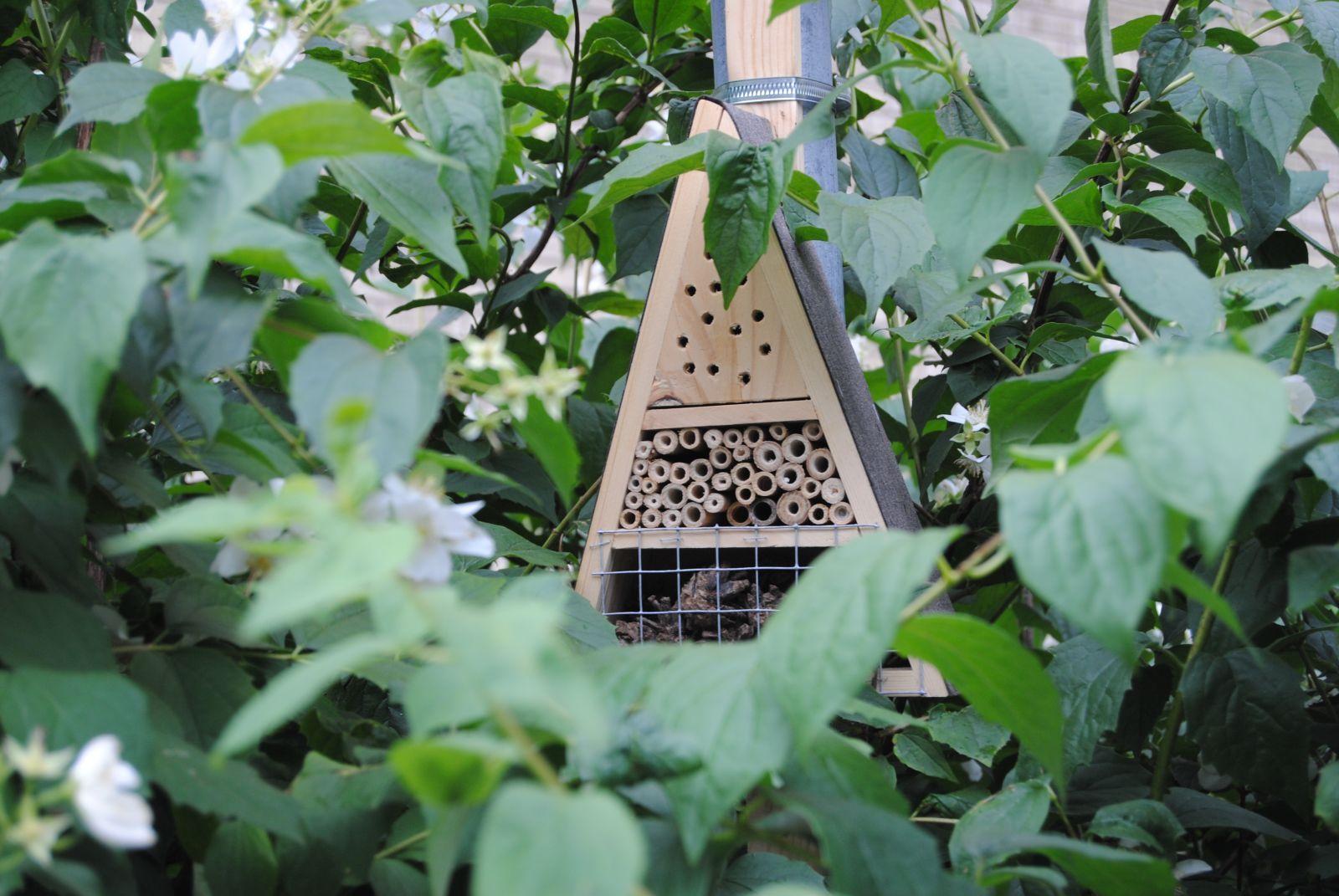 Föreningen har ett flertal insektshotell.