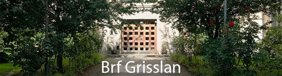 Brf Grisslan
