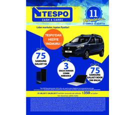 Tespo Aktüel Ürünler Ağustos Kataloğukatalog, kampanya