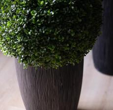lou de castellane bushes and flowerpot