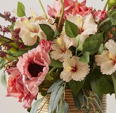 coquelicot hibiscus zoom