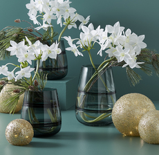 lou_de_castellane_artificielles_artificial_artificiale_fleurs_flowers_fiore_flor_vase_jarron_lumiere_light_boule_bowl_pin_pino_eucharis