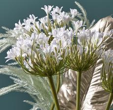 lou_de_castellane_artificielles_artificial_artificiale_fleurs_flowers_fiore_flor_agapanthe_agapanthus_agapanto_zoom