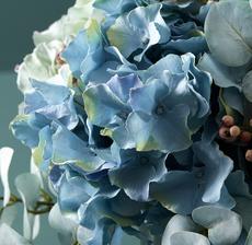 lou_de_castellane_artificielles_artificial_artificiale_fleurs_flowers_fiore_flor_hortensia_hydrangea_zoom