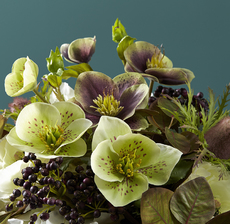 lou_de_castellane_artificielles_artificial_artificiale_fleurs_flowers_fiore_flor_hellebore_elleboro_eleboroç