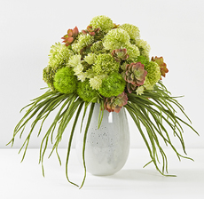 bouquet vegetal