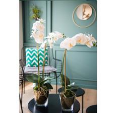 lou_de_castellane_artificielles_artificial_artificiale_fleurs_flowers_fiore_flor_orchidee_orchid_orquidea_orchidea