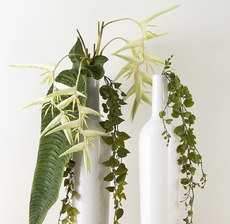 vase bouteille blanc