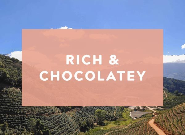 Rich and chocolatey