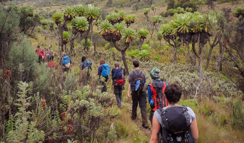 school_expedition_uganda_trek_mount_elgon