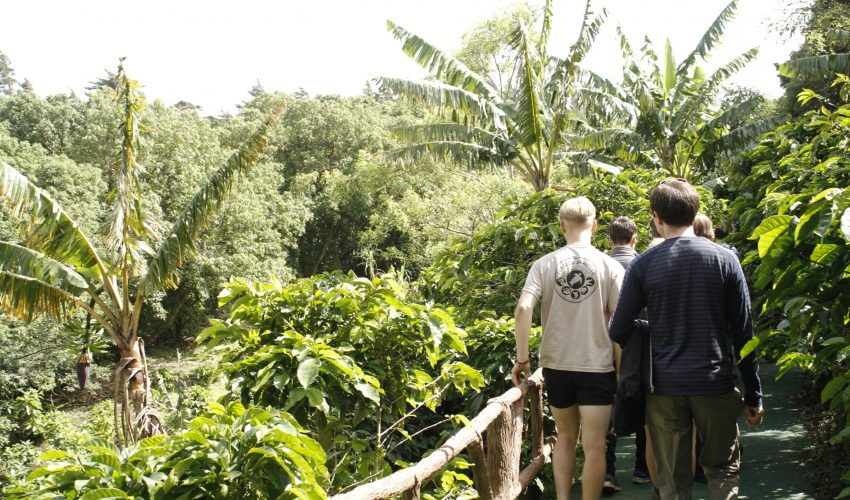 school_expedition_costa_rica_scuba_jungle_walk