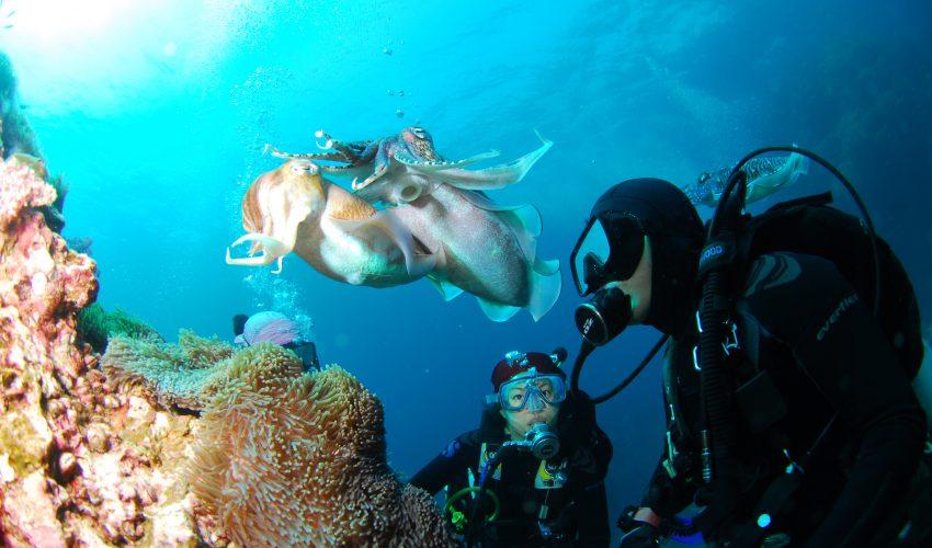 school_expedition_tanzania_scuba_underwater_dive