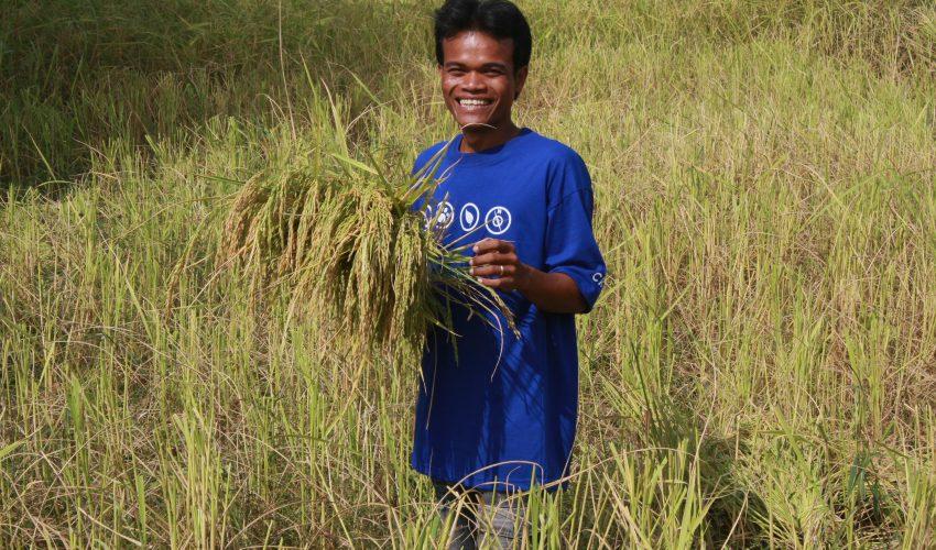 school_expedition_cambodia_trek_harvesting_crops