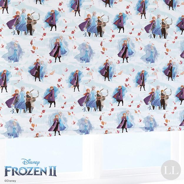 Disney Frozen 2 Fantasy 2019