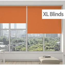 R200s Standard Roller System with Banlight XL Blinds