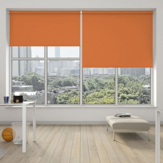 R200L Heavy Duty Roller System with Banlight XL Blinds