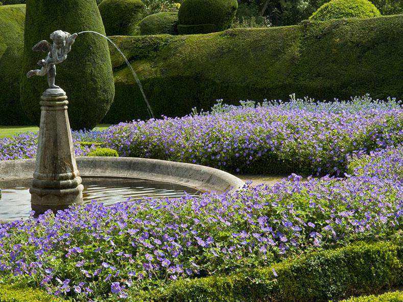 Crathes Castle Garden and Estate