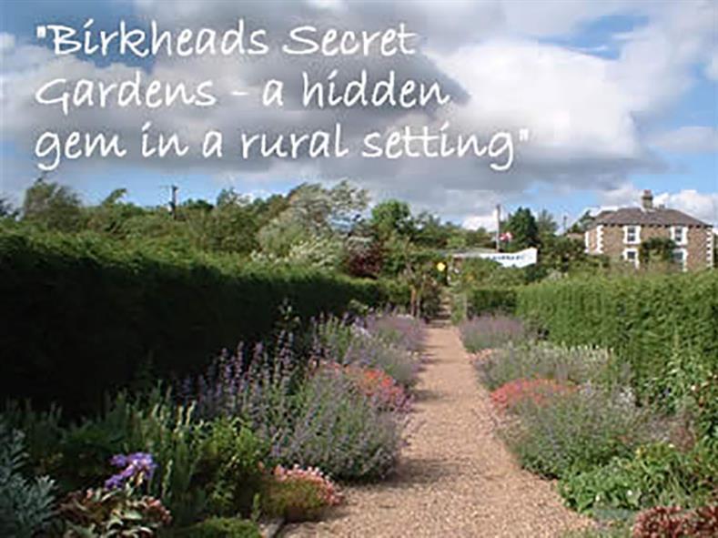 birkheads-garden-2