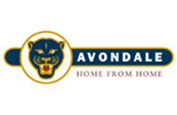 Avondale static caravans for sale