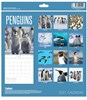 2021 Square Month To View Animal Photo Wall Calendar - Penguins