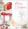 2 x Box Of 10 Winter Scenic Premium Inserted Christmas Cards - Robin in Garden