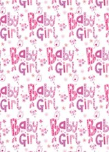 New Baby Girl Gift Wrapping Paper 1 Sheet & Matching Tag - Flowers & Butterflies