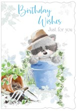 """Open Male Birthday Card - Cute Raccoon in Blue Plant Pot with Glitter 7.75x5.25"""""""