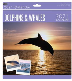 2021 Square Month To View Animal Photo Wall Calendar - Dolphins & Whales