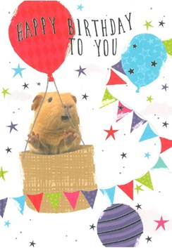 "Open Male Birthday Card - Guinea Pig, Big Hot Air Balloons & Stars 7.75"" x 5.25"""