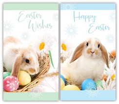 "Set Of 2 Happy Easter Greetings Card - Rabbits, Daisies & Easter Eggs 6"" x 3.25"""