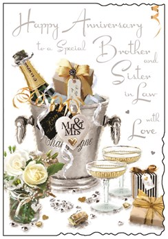 Jonny Javelin Brother & Sister-in-Law Anniversary Card Champagne Bucket 9x6.25""
