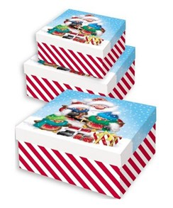 Set Of 3 Large Christmas Square Nested Gift Boxes - Cute Santa Claus & Robins