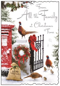 Jonny Javelin From All The Family Christmas Card - Red Postbox Pheasants 9x6.25""