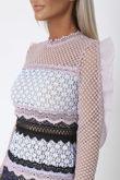 Terina Lace Mini Dress