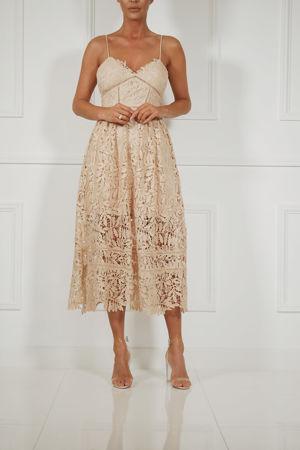 Alex Lace Midi Dress in Cream