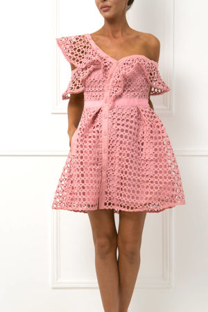 Camille Lace Skater Dress in Pink