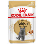 Royal Canin british shorthair alimento completo gatos adultos raza british shorthair envase de 85g.