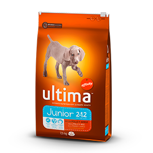 Ultima junior rico en pollo arroz perro de 7,5kg.
