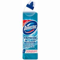 Domestos gel wc antical de 75cl.