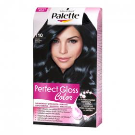Gloss tinte perfect color 110 negro azulado