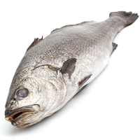 Corvina, de 1kg. en pieza