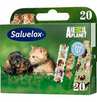 Salvelox apositos animal planet por 20 unidades