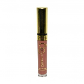 Astor brillo labios perfect stay 8 horas nº 012