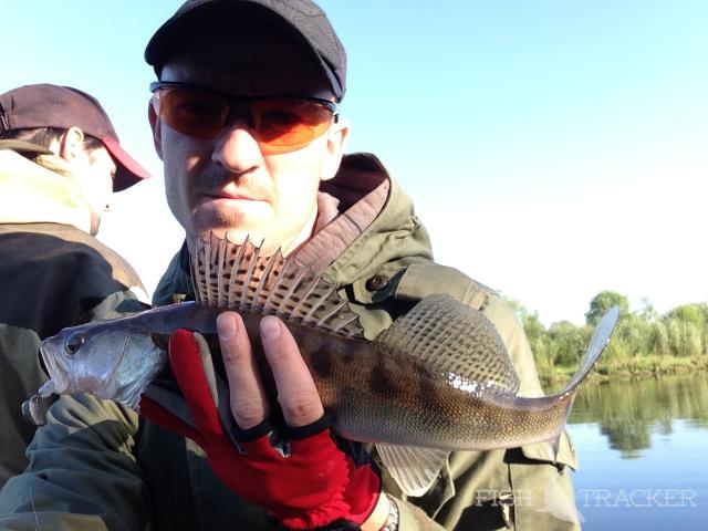 Отчеты о рыбалках — Рыбалка в Марий Эл