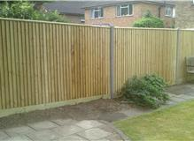 Feather-edge fencing with concrete posts capping detail.