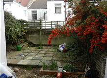 Landscaping garden, painting and repointing rear of house