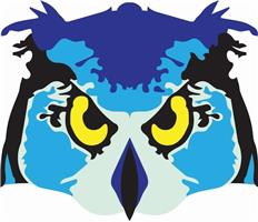 Owl Locksmiths & Security