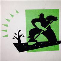 Bontempo Garden Services Ltd
