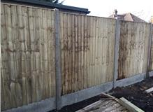 Panel Fencing in Poole